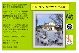 2015_new_year_card